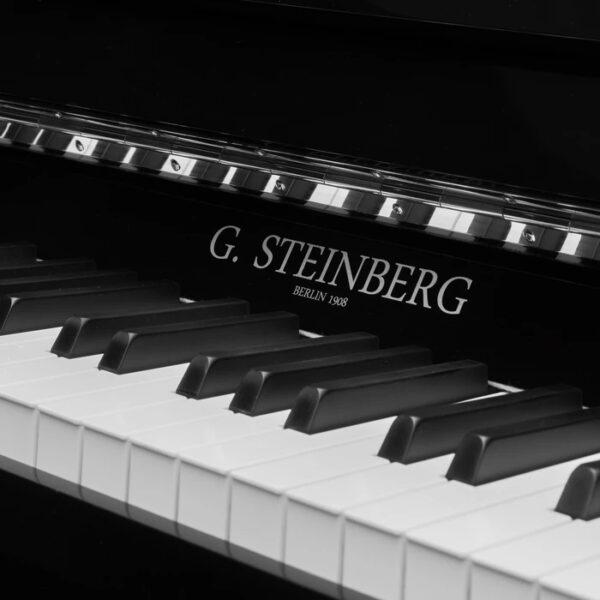 G. Steinberg 123 Economy