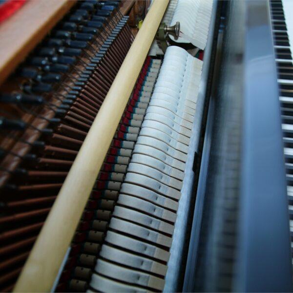 Steingraeber & Söhne Piano 115 K innen