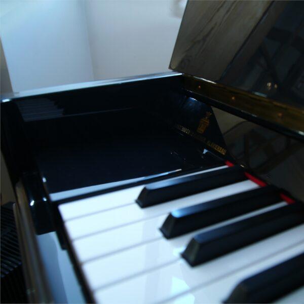 Steingraeber & Söhne Piano 115 K Tasten