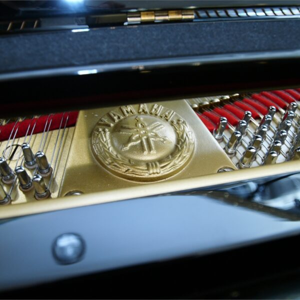 Yamaha C3X Platte